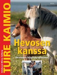 hevosen-kanssaa
